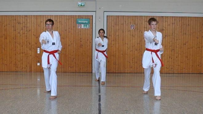 Corona macht erfinderisch - Taekwondo-Sparte des TV Heiligenloh nimmt erfolgreich an der ersten ITO Online Meisterschaft teil